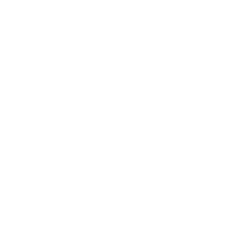 The Wiley Protocol